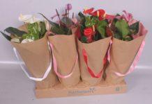 empaque sostenible flores