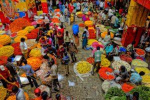 flores india